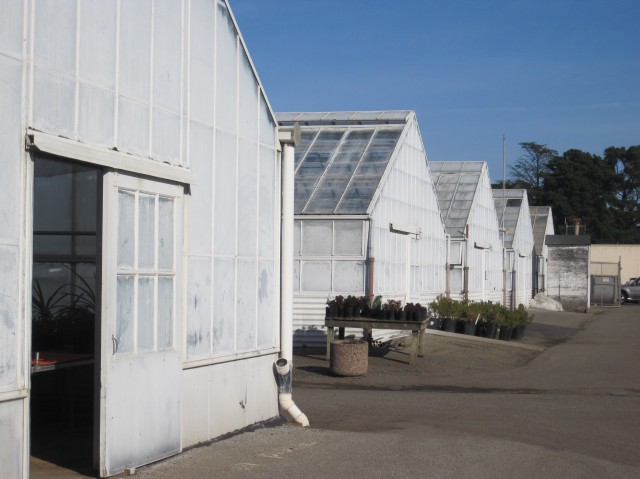 there are eight green houses and three shade frames (open-air, covered by shade cloth)