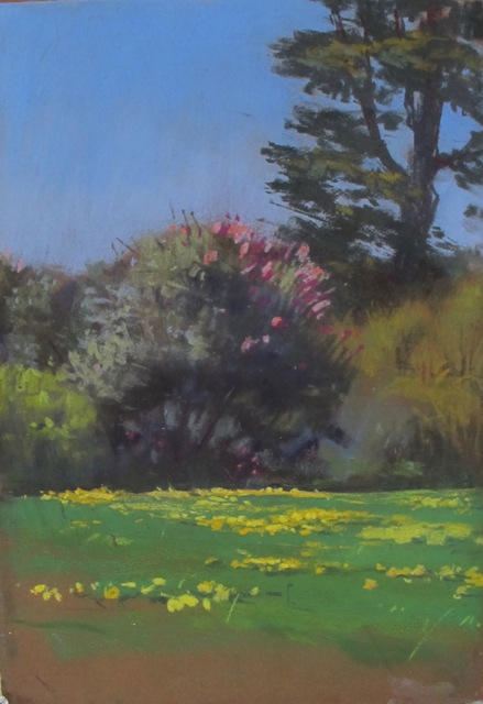 "Yellow Field. pastel on sandpaper. 15x18"". Diane Olivier"