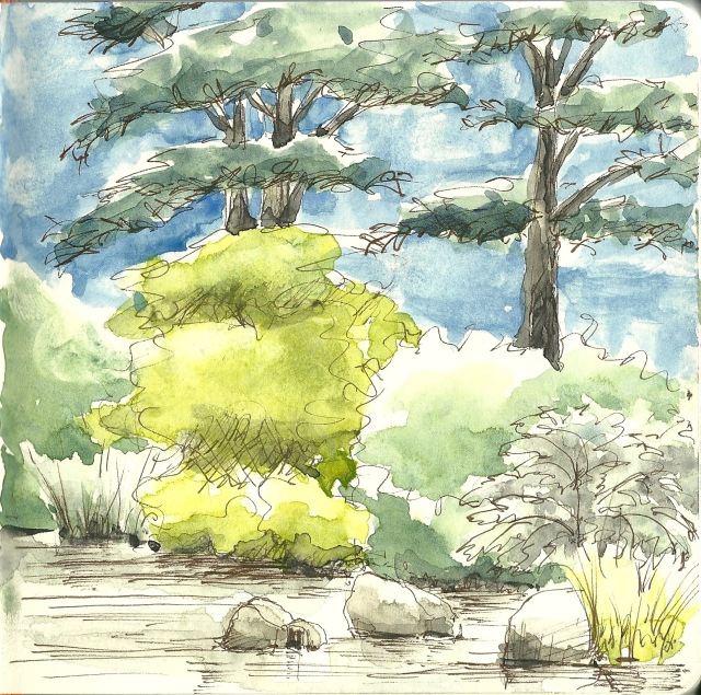 A pond in the botanical garden (sketch by Heath Massey)
