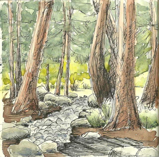 AIDS Memorial Grove (sketch by Heath Massey)