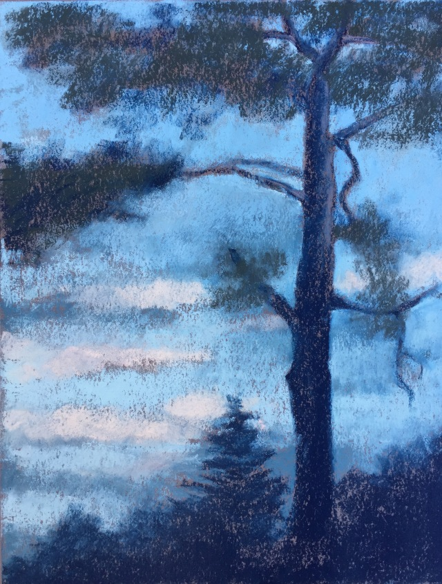 GGP Eucalyptus at dusk
